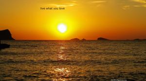 ibiza sun love