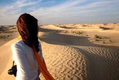 desert-traveler