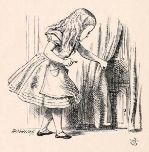 alice and the door